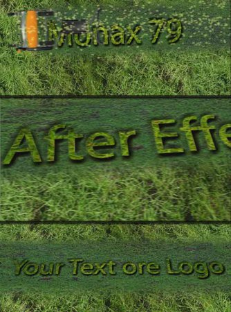 After Effects project logo grass